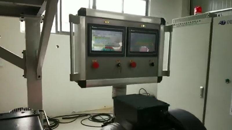 Weight Loss Weighing System TSH35P Twin Screw Granulator Machine